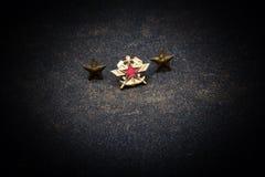 Il 23 febbraio protezione del giorno di patria Fotografia Stock