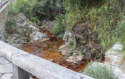 Il ferro rosso ha riempito l'acqua naturale della montagna che forma un fiume fotografia stock libera da diritti