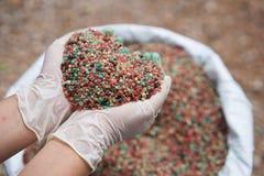 Il fertilizzante in agricoltore consegna la borsa del fertilizzante Immagini Stock