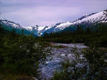 Il fianco di una montagna dell'Alaska immagine stock libera da diritti