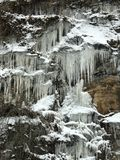 Il fianco di una montagna e la foresta congelati hanno riempito di ghiaccioli vicino ad un fiume in Virginia Occidentale - INVERN fotografia stock