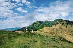 Il fianco di una montagna Kashmir Immagini Stock