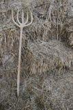 Il fieno è una molta e forca di legno Immagini Stock