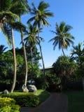 Il Fiji Fotografia Stock