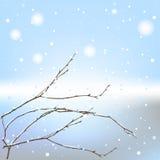 Il filetto della priorità bassa di inverno Fotografia Stock