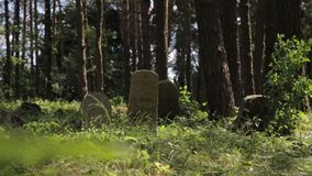 Il filtraggio del colpo del cimitero islamico abbandonato nell'erba e negli alberi della foresta si sviluppa sopra i monumenti gr video d archivio