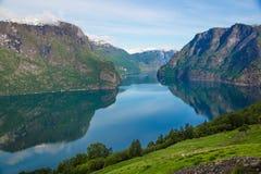 Il fiordo di Aurlands dentro può dal punto di vista di Stegastein, Norvegia Fotografie Stock