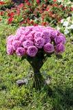 Il fiore è aumentato Fotografie Stock