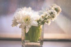 Il fiore bianco in vaso di vetro disposto davanti allo specchio, il fuoco molle e l'annata tonificano Immagine Stock Libera da Diritti