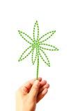 Il fiore crea dai fogli verdi a disposizione Immagini Stock Libere da Diritti