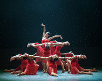 Il fiore del ballo Asia-latino Fotografia Stock Libera da Diritti