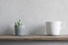 il fiore del cactus con la tazza di caffè macchiato sulla parete di legno accantona moderno Immagini Stock