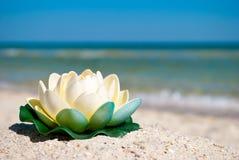 Il fiore di loto bianco con le foglie verdi si trova sulla sabbia su un fondo delle vacanze estive blu del cielo blu e del mare Immagini Stock Libere da Diritti