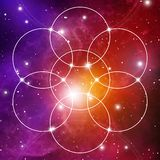Il fiore di vita il collegamento circonda il simbolo antico sul fondo dello spazio cosmico La geometria sacra La formula della na illustrazione di stock