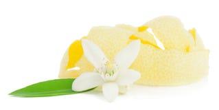 Il fiore ed il limone hanno asciugato la buccia. Fotografie Stock