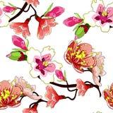 Il fiore senza cuciture del ramo del modello della mandorla sboccia Vettore IL illustrazione vettoriale