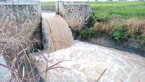 Il fiume è sottomesso come irrigazione del giacimento del riso fotografia stock libera da diritti