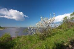 Il fiume Amur Fotografia Stock