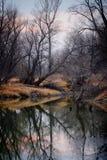 Il fiume in autunno Immagini Stock