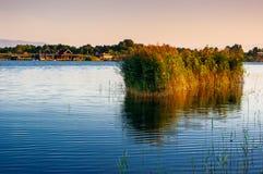 Il fiume Bojana Fotografie Stock Libere da Diritti