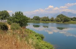 Il fiume Buna vicino a Shkoder, Albania del nord Fotografia Stock