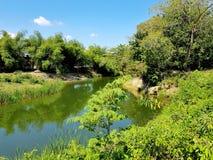 Il fiume Camu in villa Montellano vicino a Puerto Plata fotografia stock
