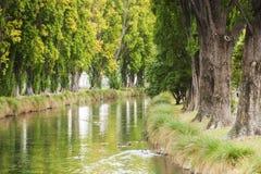 Il fiume Christchurch Nuova Zelanda di Avon fotografie stock