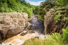 Il fiume colloca sul tee i flussi sopra forza elevata Immagine Stock