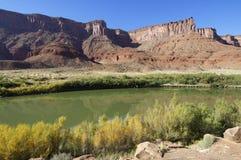 Il fiume Colorado Fotografia Stock Libera da Diritti