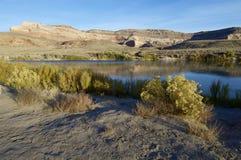 Il fiume Colorado Fotografie Stock Libere da Diritti