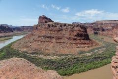 Il fiume Colorado in Canyonlands N P l'utah Immagine Stock