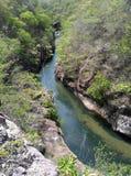Il fiume Colorado in Costa Rica Immagine Stock Libera da Diritti
