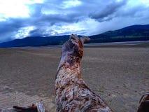 Il fiume Columbia Fotografie Stock Libere da Diritti