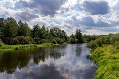 Il fiume con la costa, l'erba ed i cespugli verdi Immagini Stock