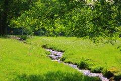 Il fiume con il sole riflette ai Vosgi immagine stock libera da diritti