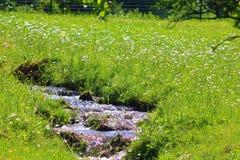 Il fiume con il sole riflette ai Vosgi immagini stock