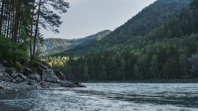 Il fiume con una riva pietrosa, flussi di Katun del turchese nelle montagne di Altai Fotografie Stock Libere da Diritti