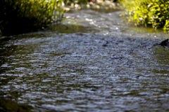 Il fiume corrente immagine stock