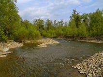 Il fiume del legname Fotografie Stock