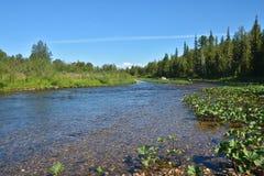 Il fiume del Nord selvaggio Immagine Stock Libera da Diritti