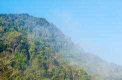 Il fiume della cascata si rilassa il viaggio Fotografia Stock