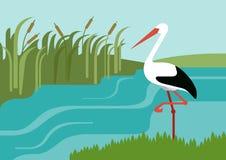 Il fiume della cicogna ricopre con canne gli uccelli piani degli animali selvatici di vettore del fumetto di progettazione Immagini Stock Libere da Diritti