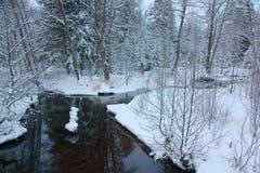 Il fiume della foresta non ha ghiaccio fotografia stock