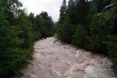 Il fiume della montagna è rumoroso, veloce, pericoloso Immagine Stock Libera da Diritti
