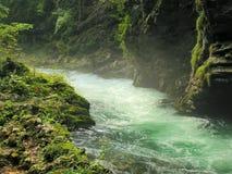 Il fiume della montagna Immagini Stock Libere da Diritti