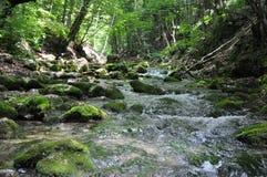 Il fiume della montagna Immagine Stock Libera da Diritti