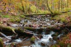 Il fiume della montagna Fotografia Stock Libera da Diritti