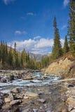Il fiume della montagna in Altai Immagini Stock Libere da Diritti
