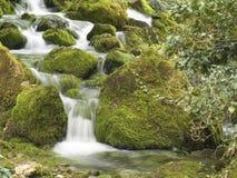 Il fiume della montagna della sorgente Fotografia Stock