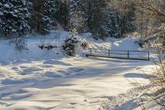 Il fiume della montagna Paesaggio di inverno Immagine Stock